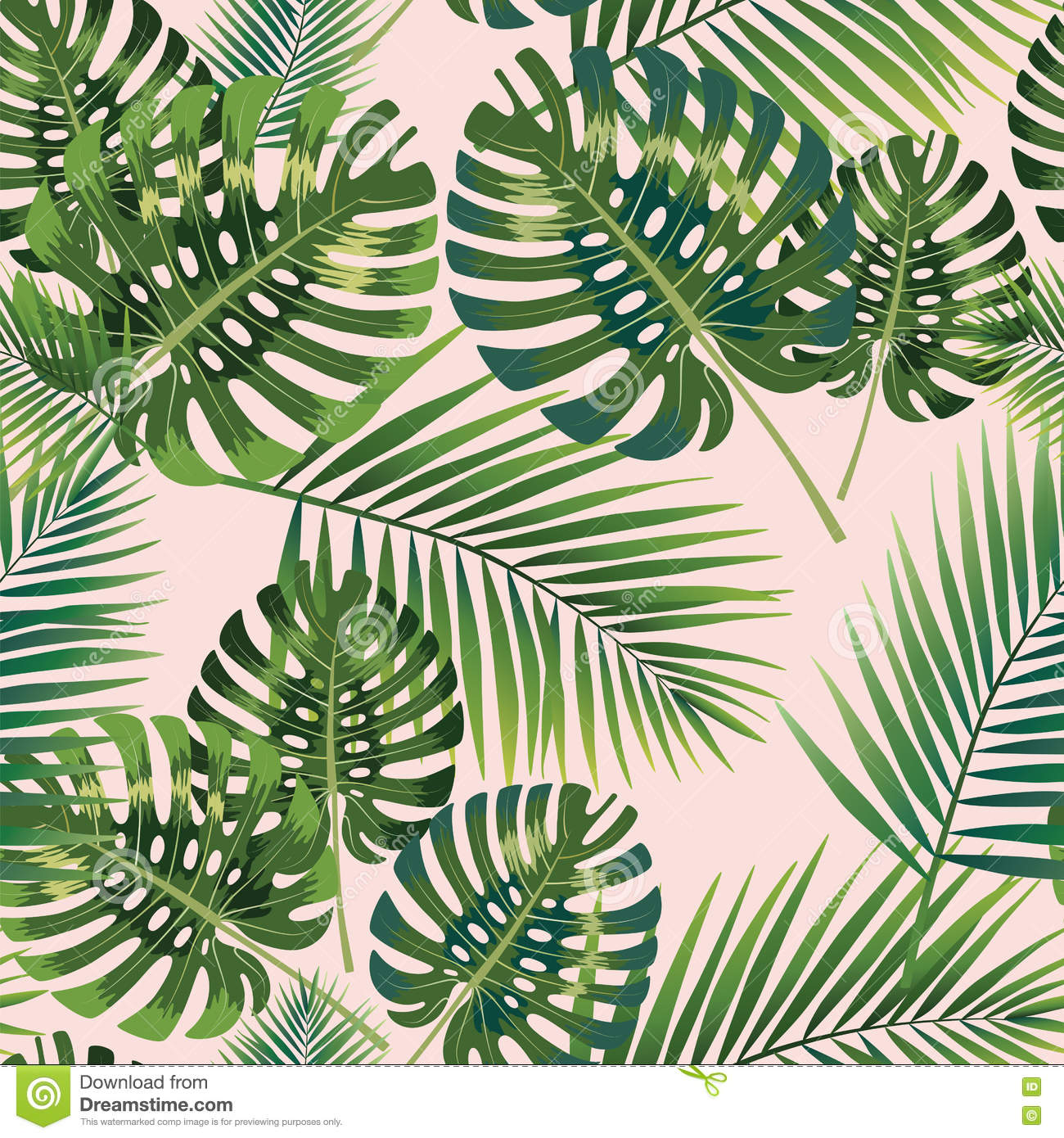 Cute Cactus Wallpaper Macbook Palm Tropical Leaves Seamless Pattern Vector Illustration
