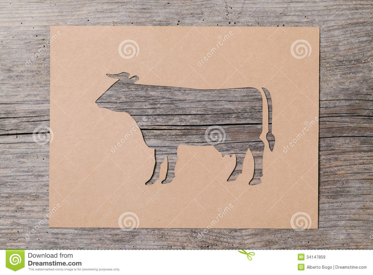 Steer Stencil Paper Cow Stock Image Image Of Sketching Retro Old