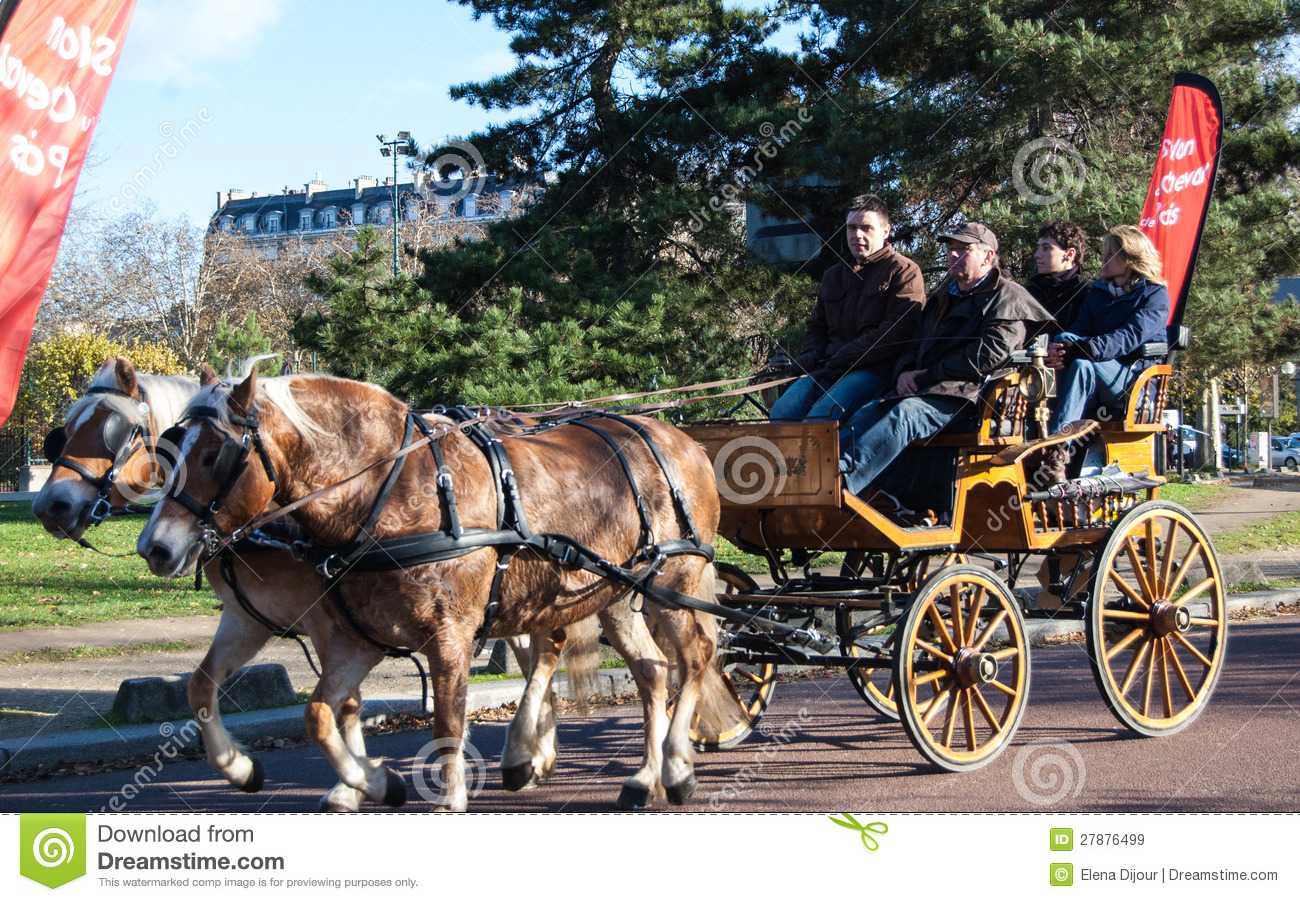 Salon Du Cheval A Paris Paris Horse Parade Editorial Stock Image Image Of Pair 27876499