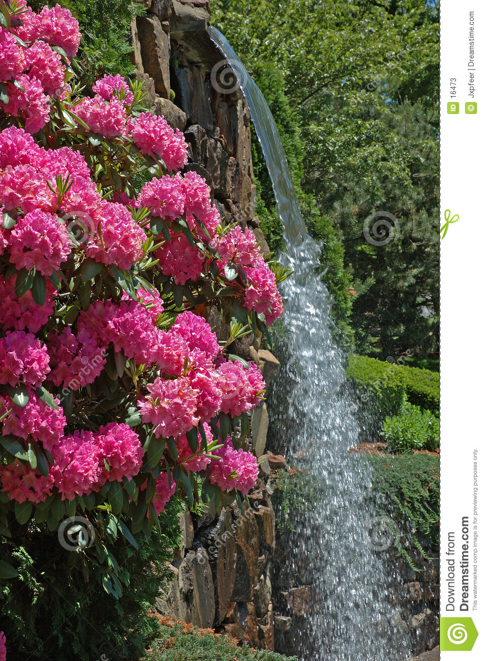 Free Fall Nature Wallpaper Park Flowers Amp Waterfall Stock Image Image Of Recreation
