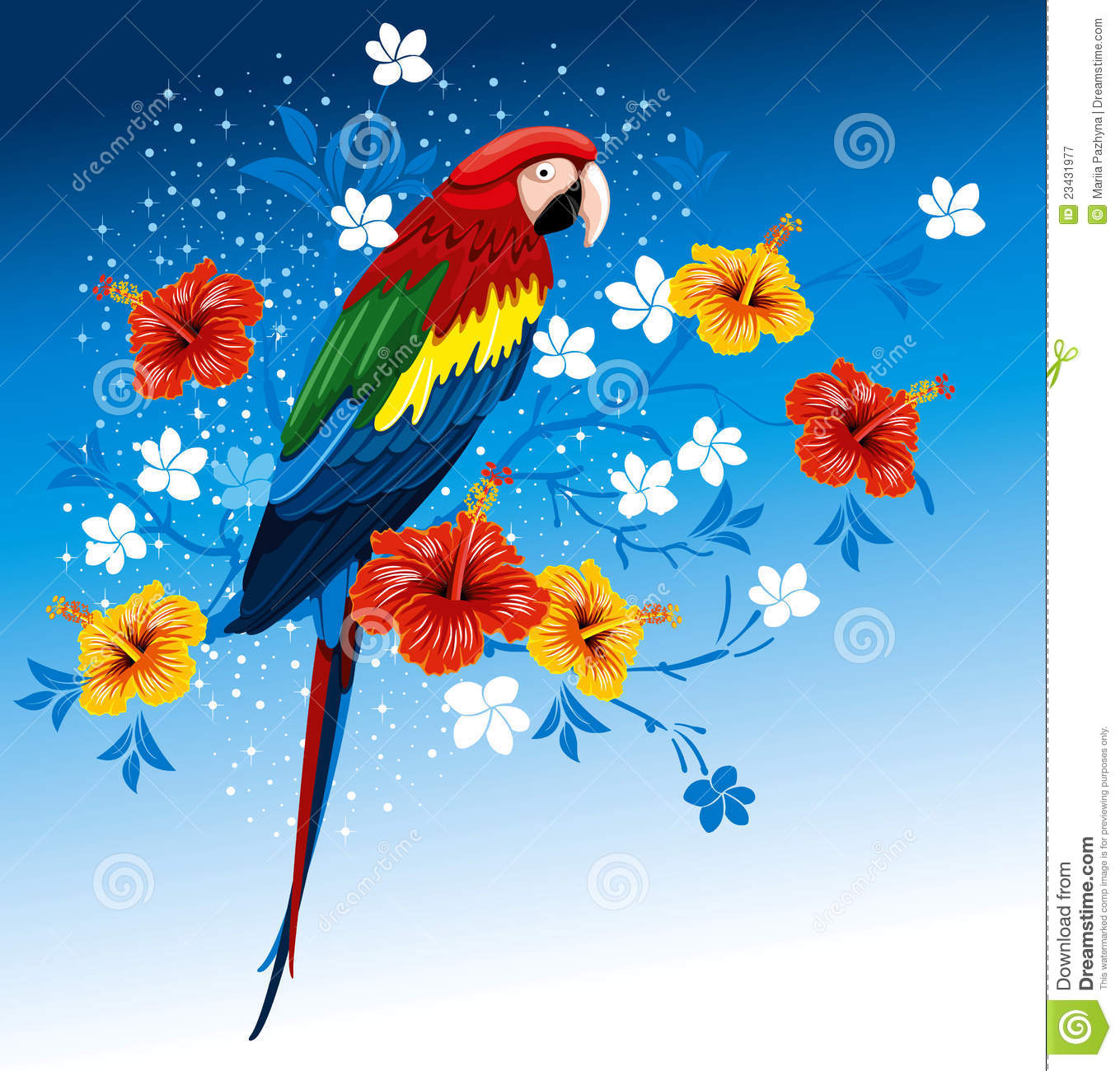 3d Colour Wallpaper Free Download Parrot And Tropical Flowers Stock Vector Image 23431977