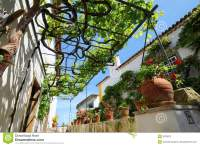 Pergola And Grapevine Royalty Free Stock Images - Image ...