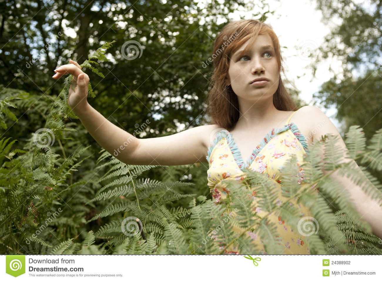 A Girl Alone Wallpaper Picnic Girl Walking Through Forest Stock Photography