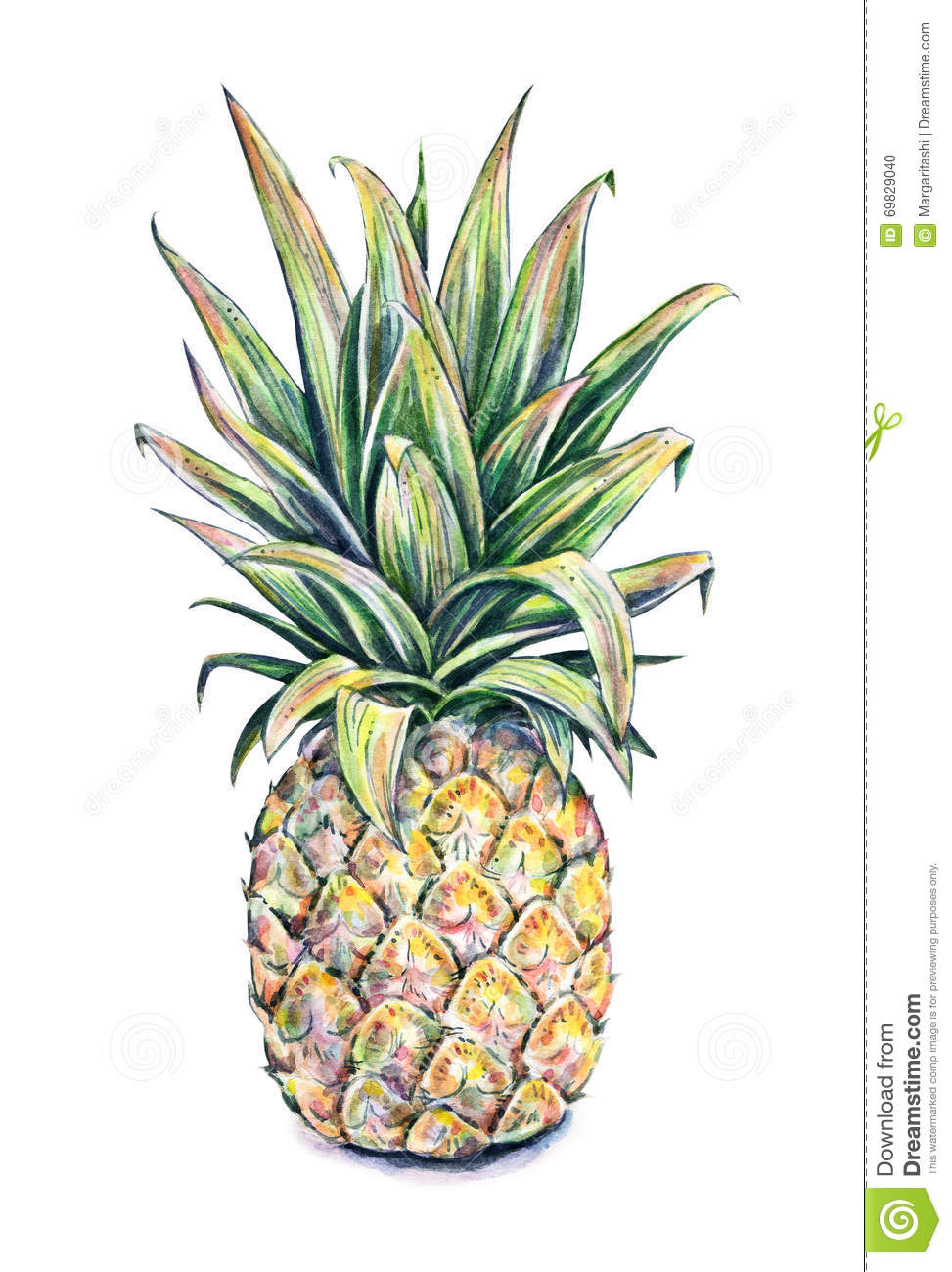 Colourful Iphone X Wallpaper Pineapple On A White Background Watercolor Colourful