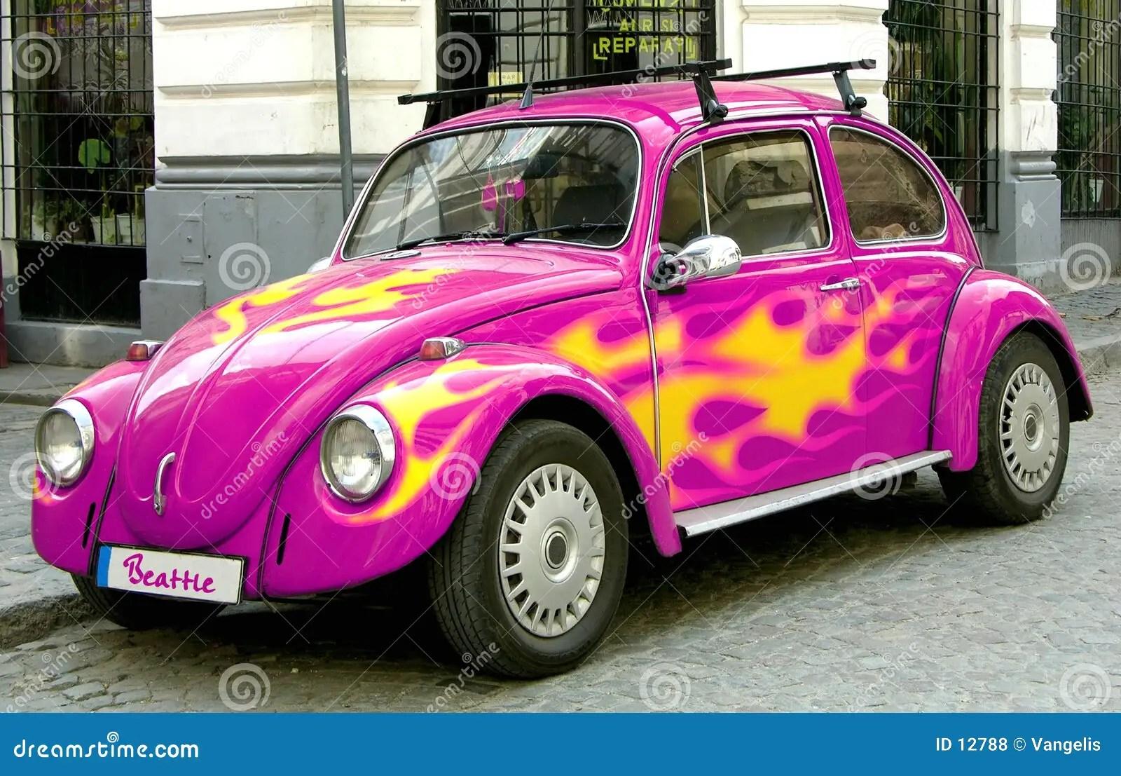 Cute Sloth Wallpaper Pink Beetle Bug Car