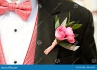 Pink And Black Tuxedo Stock Photo - Image: 31417350