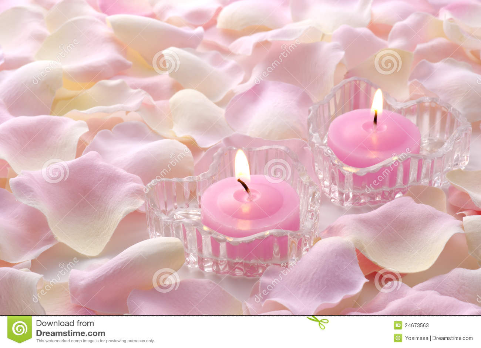 Single Rose Wallpaper Hd Pink Candles Stock Photos Image 24673563