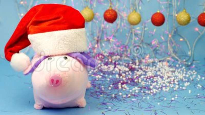 Pink Pig Stuffed Toy In A Red Santa Claus Hat On A Blue Background