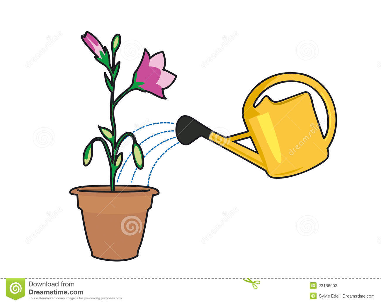 Plant Watering Cans Plants And Watering Can Stock Vector Image Of Plant