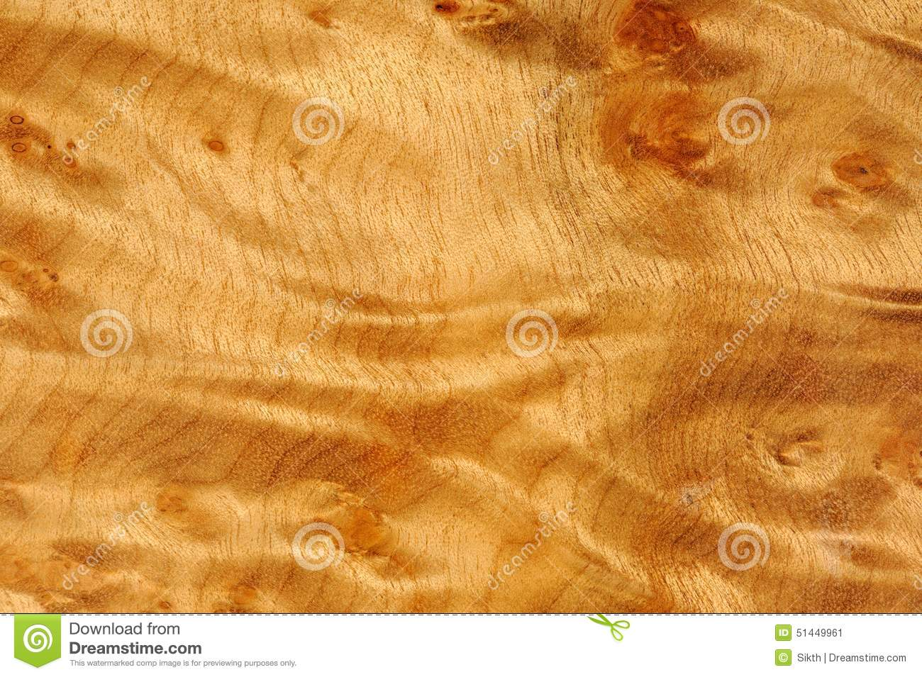 Wurzelholz Textur Polished Madrone Root Wood Texture Stock Image Image Of