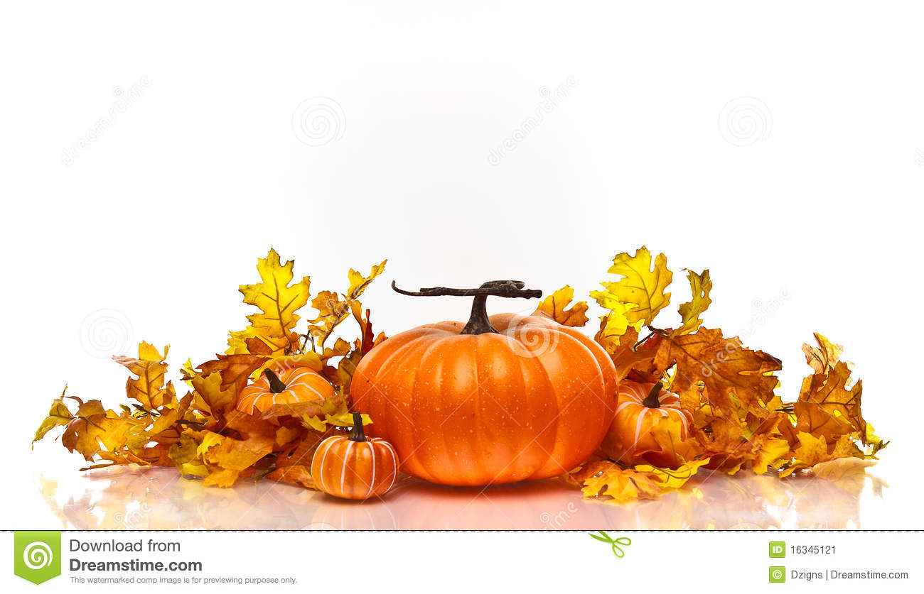 Fall Pumpkin Computer Wallpaper Pumpkins And Autumn Leaves On A White Background Stock