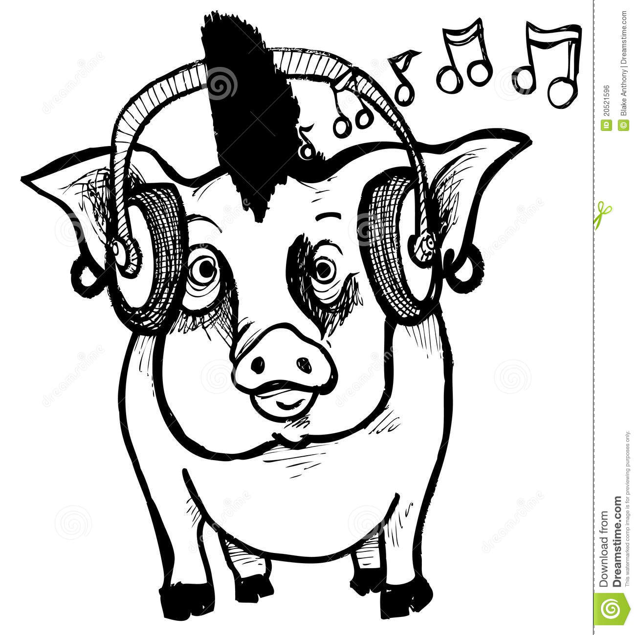 Cool Animal Print Wallpaper Punk Rock Piggy Stock Vector Image Of Funny Music Cool
