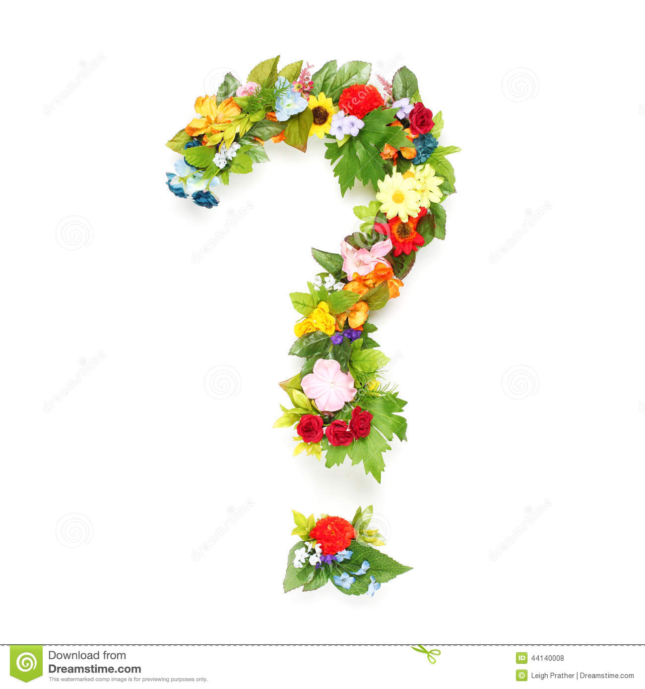 Pflanze Mit O Question Mark Made Of Leaves And Flowers Stock Photo Image