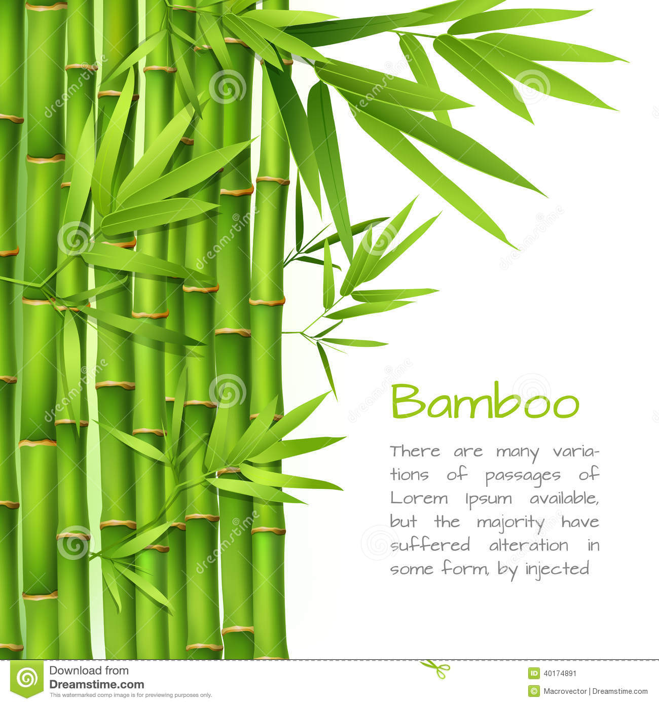 Cute Chinese Cartoon Wallpaper Realistic Bamboo Background Stock Vector Image 40174891