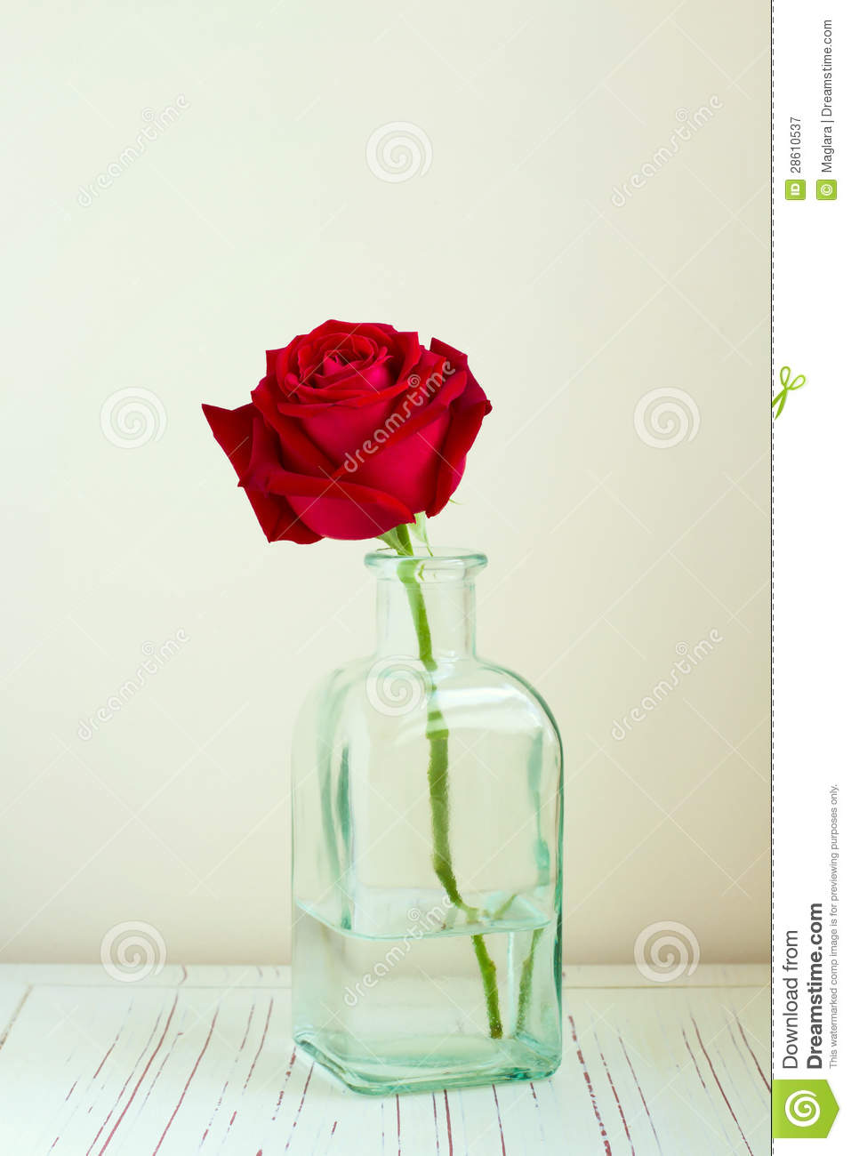 Iphone 6 Holiday Wallpaper Red Rose In Bottle Stock Image Image Of Wall Space