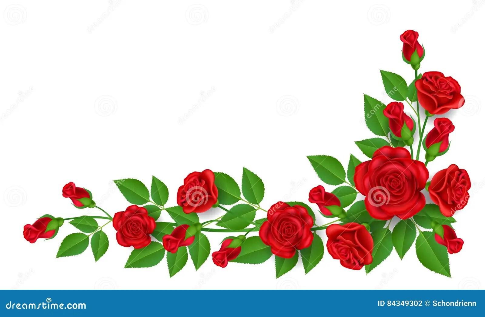 Black White Square Wallpaper Red Rose Decoration For Corner Stock Vector Illustration