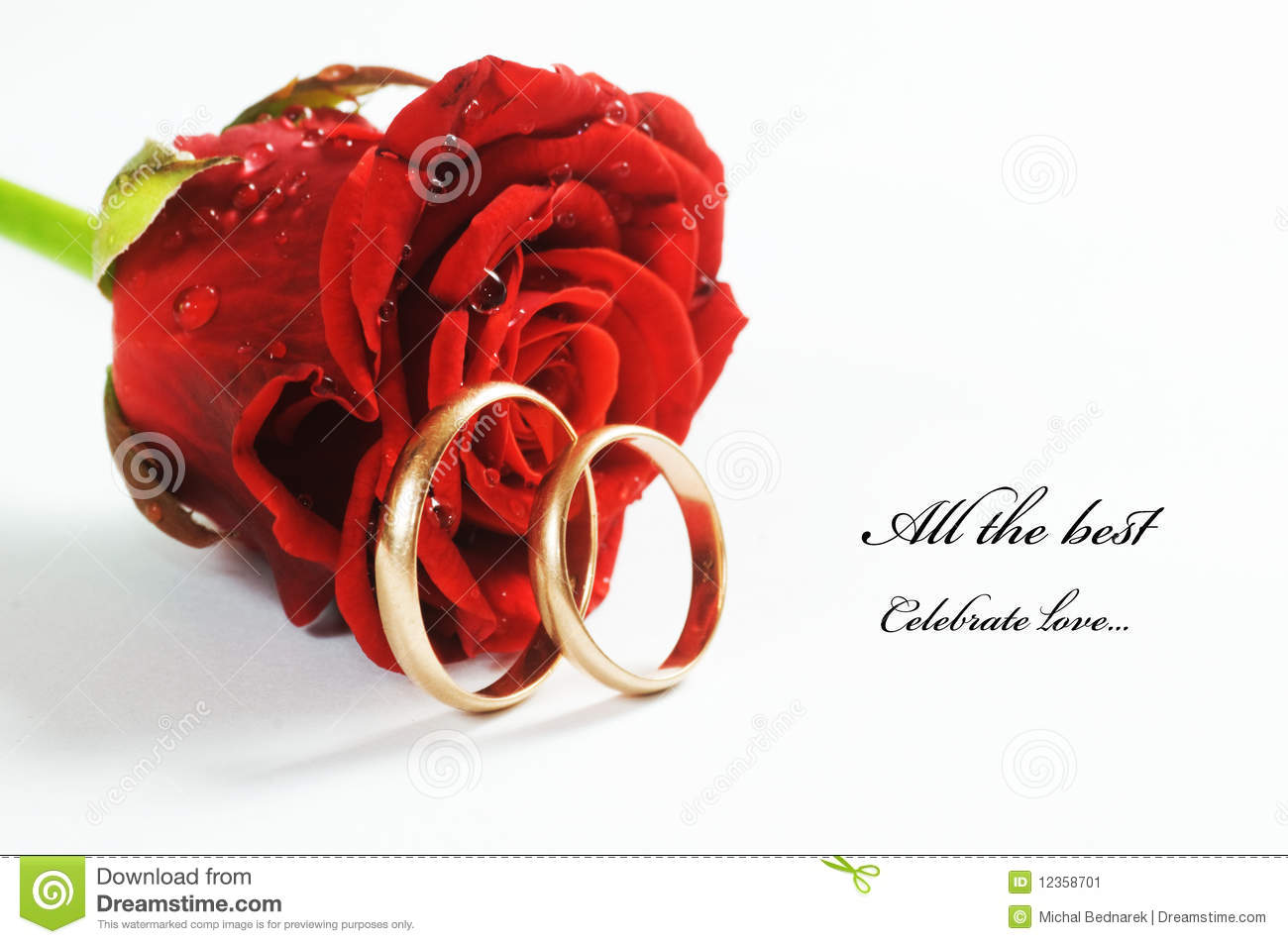 Wedding Anniversary Wallpaper With Quotes Red Rose And Wedding Ring Stock Image Image 12358701