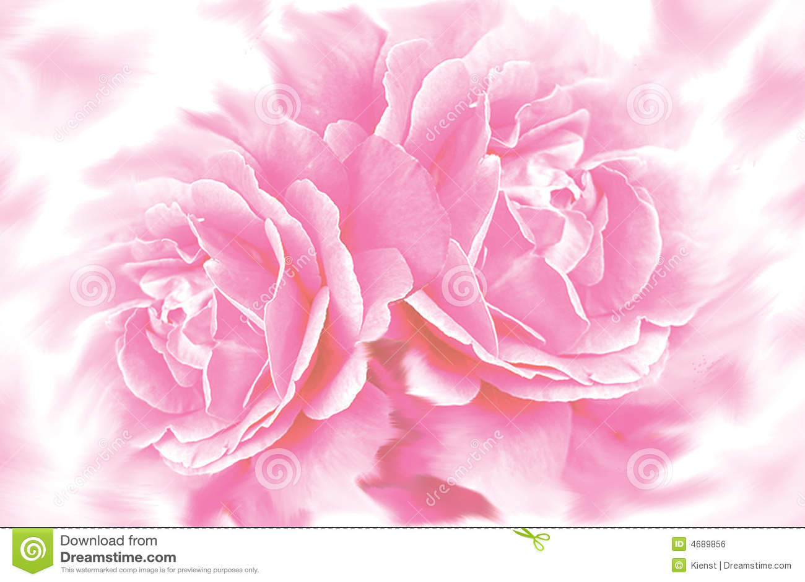 Cute Paw Print Wallpaper Rose Flower Background Stock Illustration Illustration Of