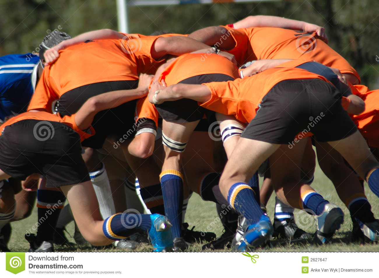 rugby players stock photography