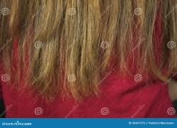 Split Ends Hair Close Up