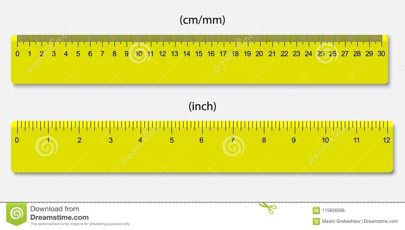 10 In Cm Rulers Marked In Centimeters And Inches Stock Vector