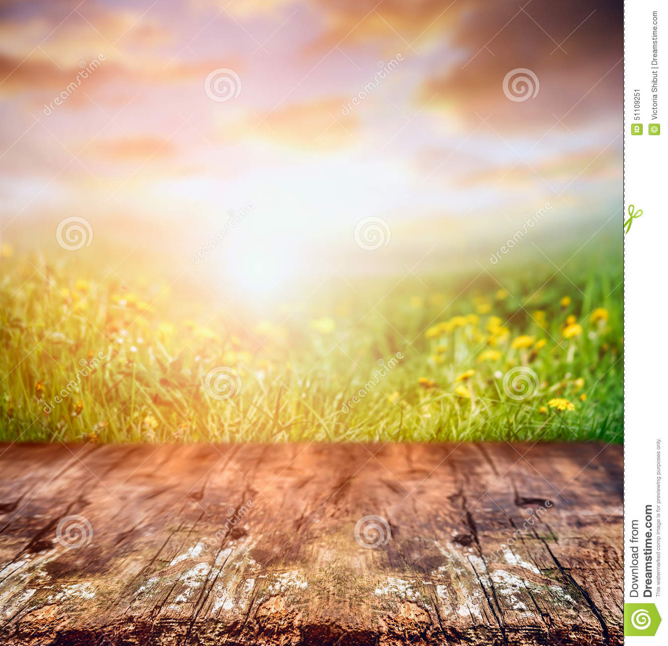 Fall In Central Park Wallpaper Rustic Wooden Table Over Yellow Dandelion Field And Sunset