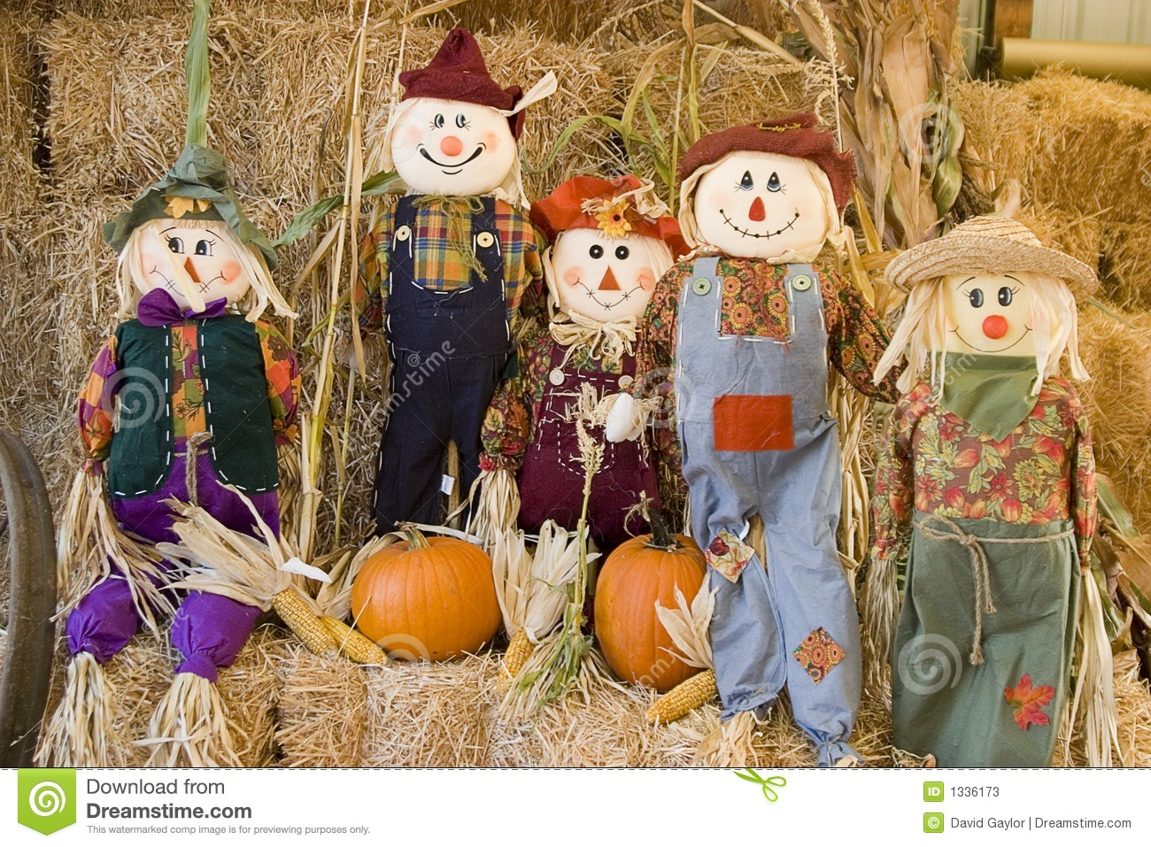 Fall Harvest Wallpaper Hd Scarecrow Family Stock Photos Image 1336173