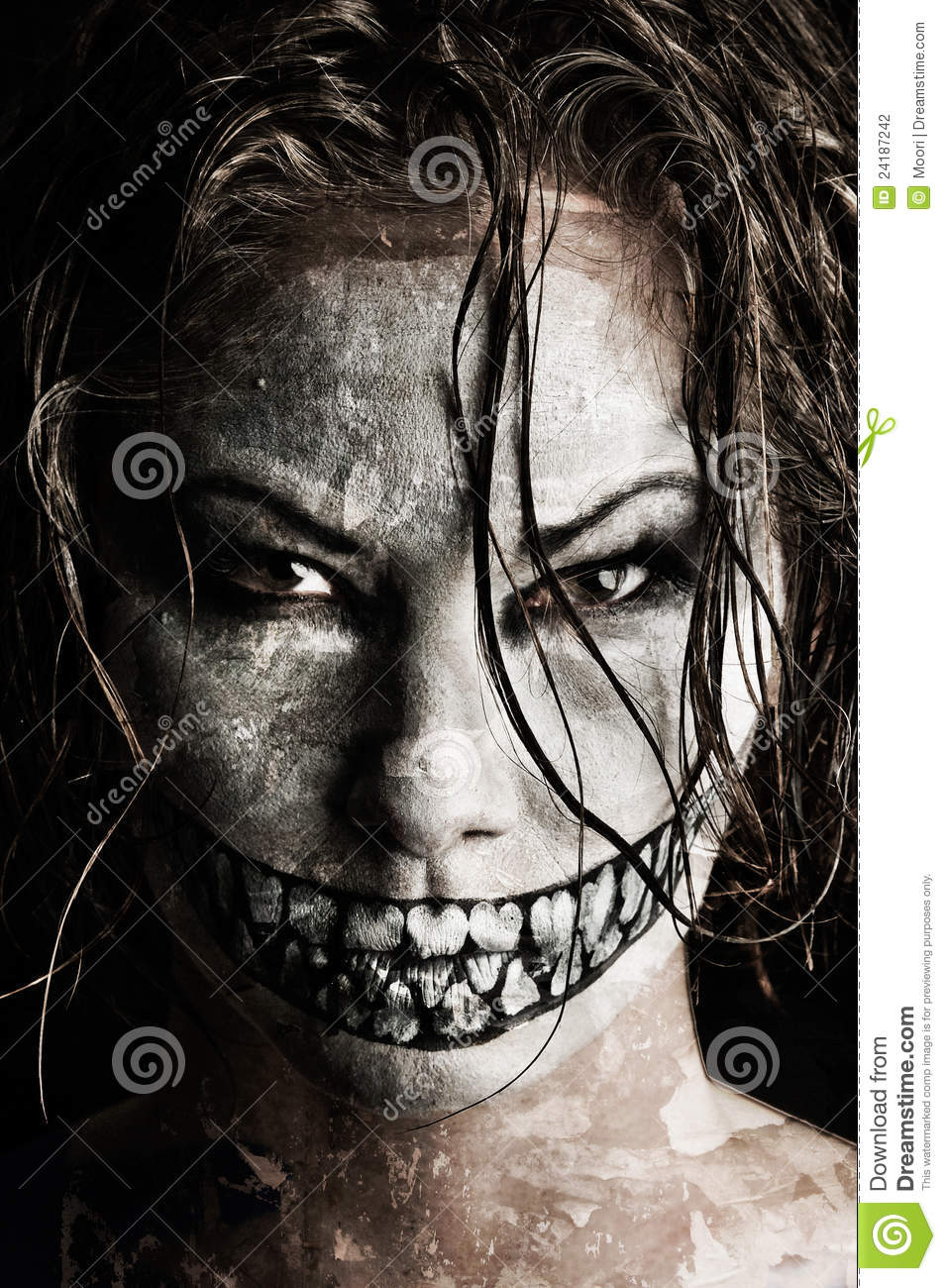 Day Of The Dead Girl Wallpaper Scary Girl Stock Photography Image 24187242