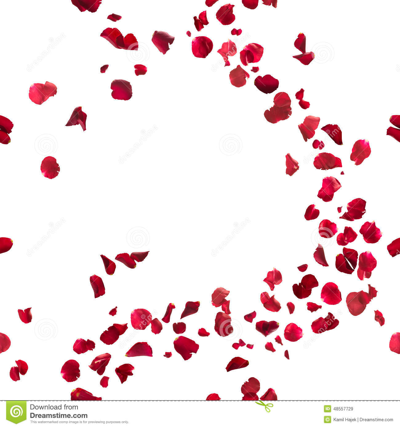 Rose Petals Falling Wallpaper Transparent Gif Seamless Red Rose Petals Breeze Stock Image Image Of