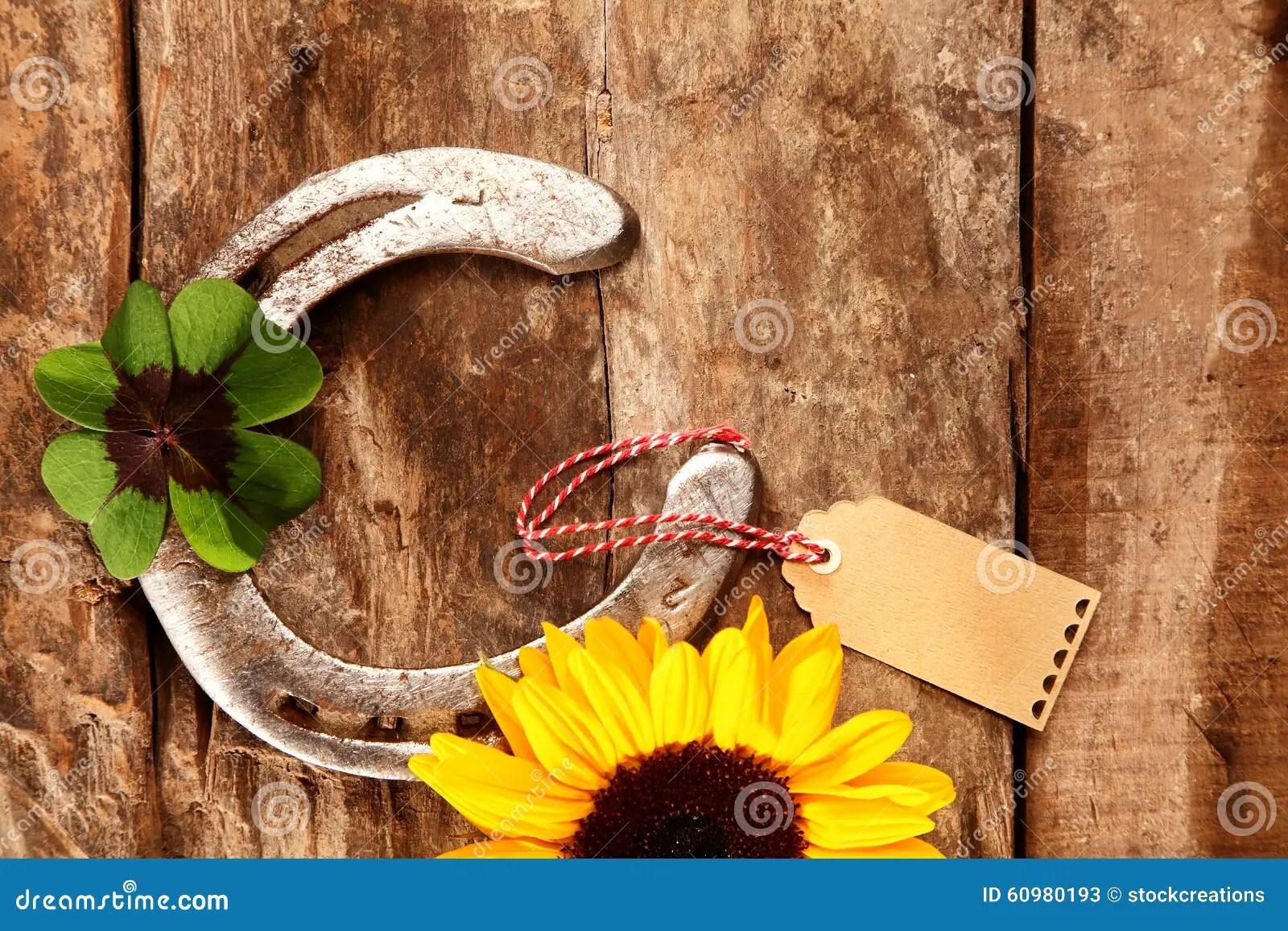 Old Wood Wallpaper Hd Shiny Metal Horseshoe With An Irish Shamrock Stock Photo