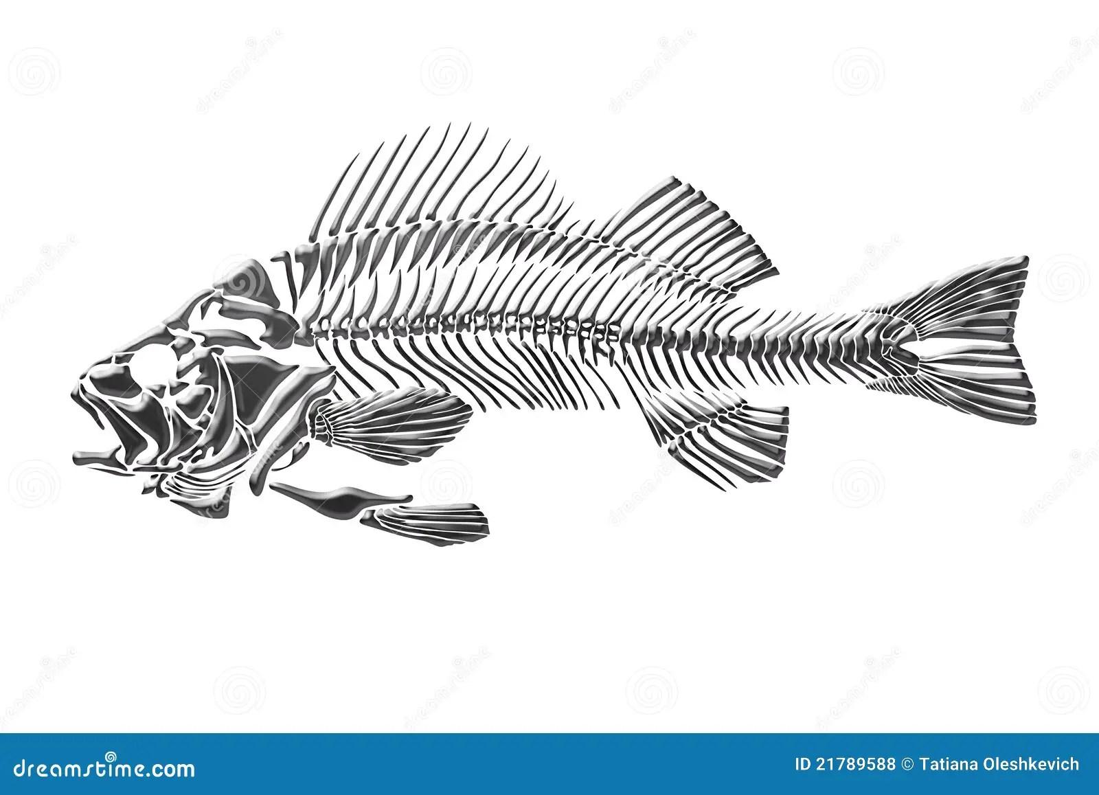 Download Koi Fish 3d Wallpaper Skeleton Fish Royalty Free Stock Photos Image 21789588