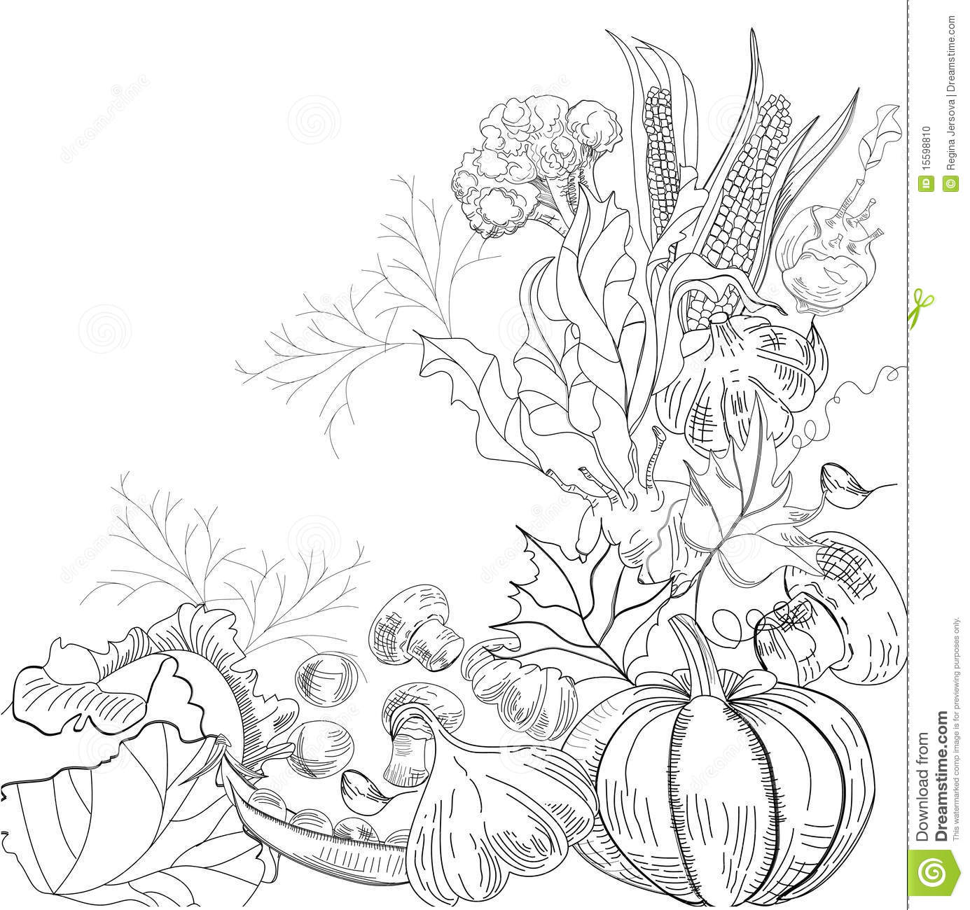 Royalty free stock photo download sketch with vegetable