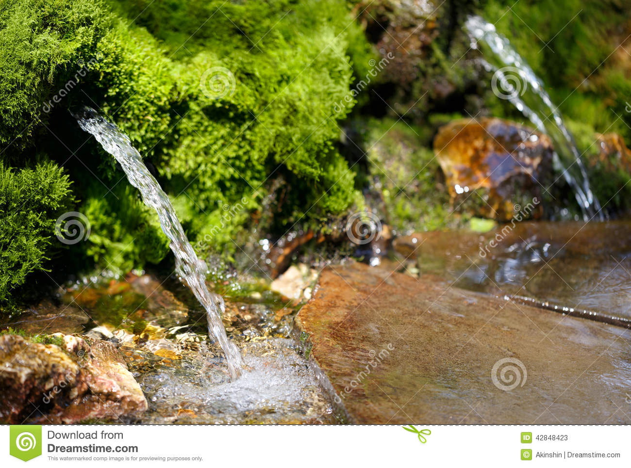Photo Source Source Of Spring Water Stock Image Image Of Irrigate