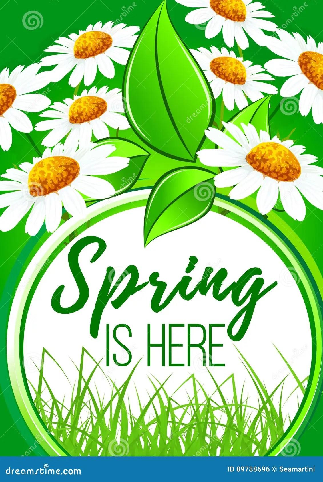 Spring Is Here Flower Frame Border Design Stock Vector