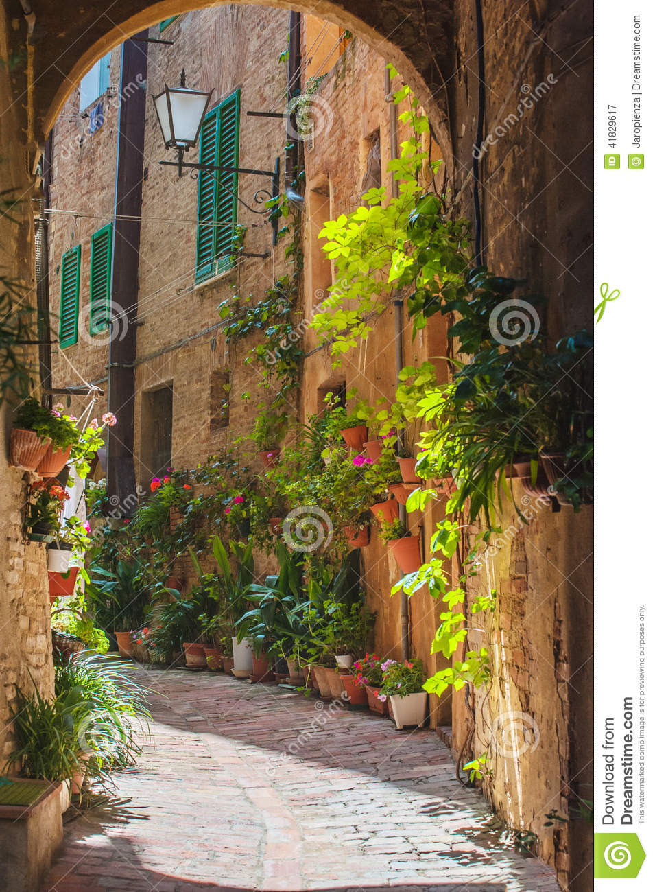 3d Design Flower Wallpaper The Streets Of The Old Italian City Of Siena Stock Photo