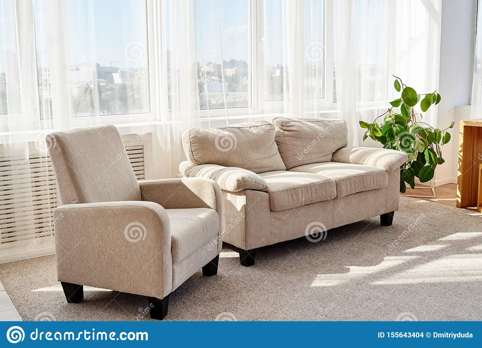 Stylish Modern Living Room With Comfortable Beige Sofa Armchair And Small Green Tree On Floor Living Room Interior Stock Photo Image Of Wooden Pillow 155643404