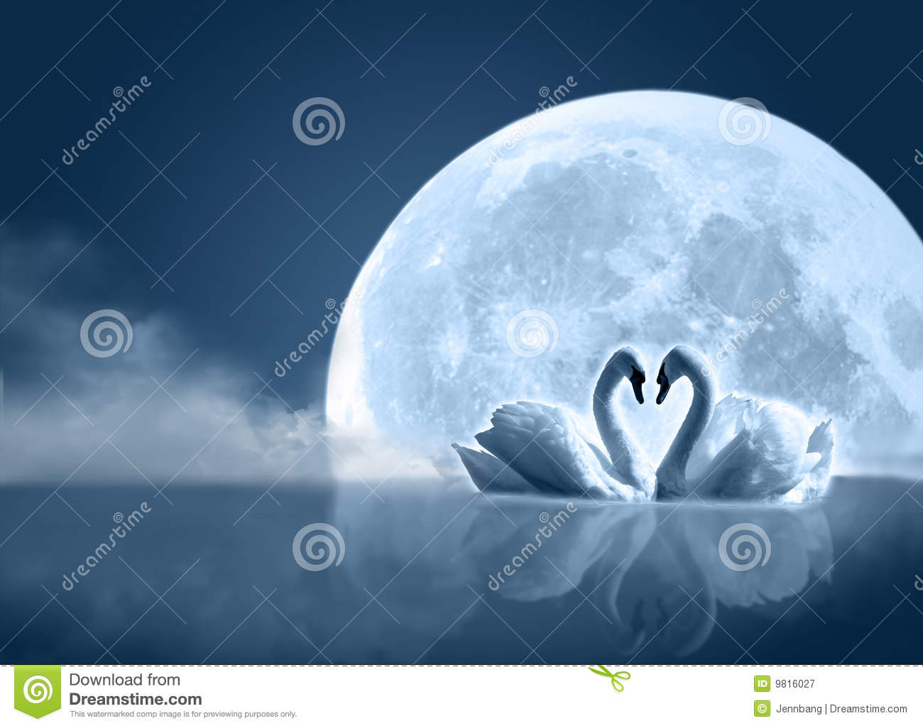 Love And Romance Wallpapers With Quotes Swan In The Moon Stock Illustration Illustration Of