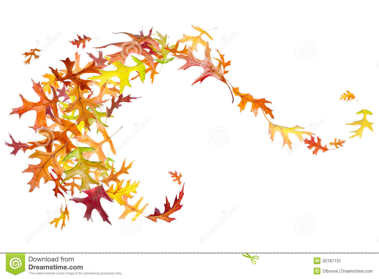 Fall Of The Leafe Wallpaper Swirl Of Autumn Leaves Stock Image Image Of Macro Fallen