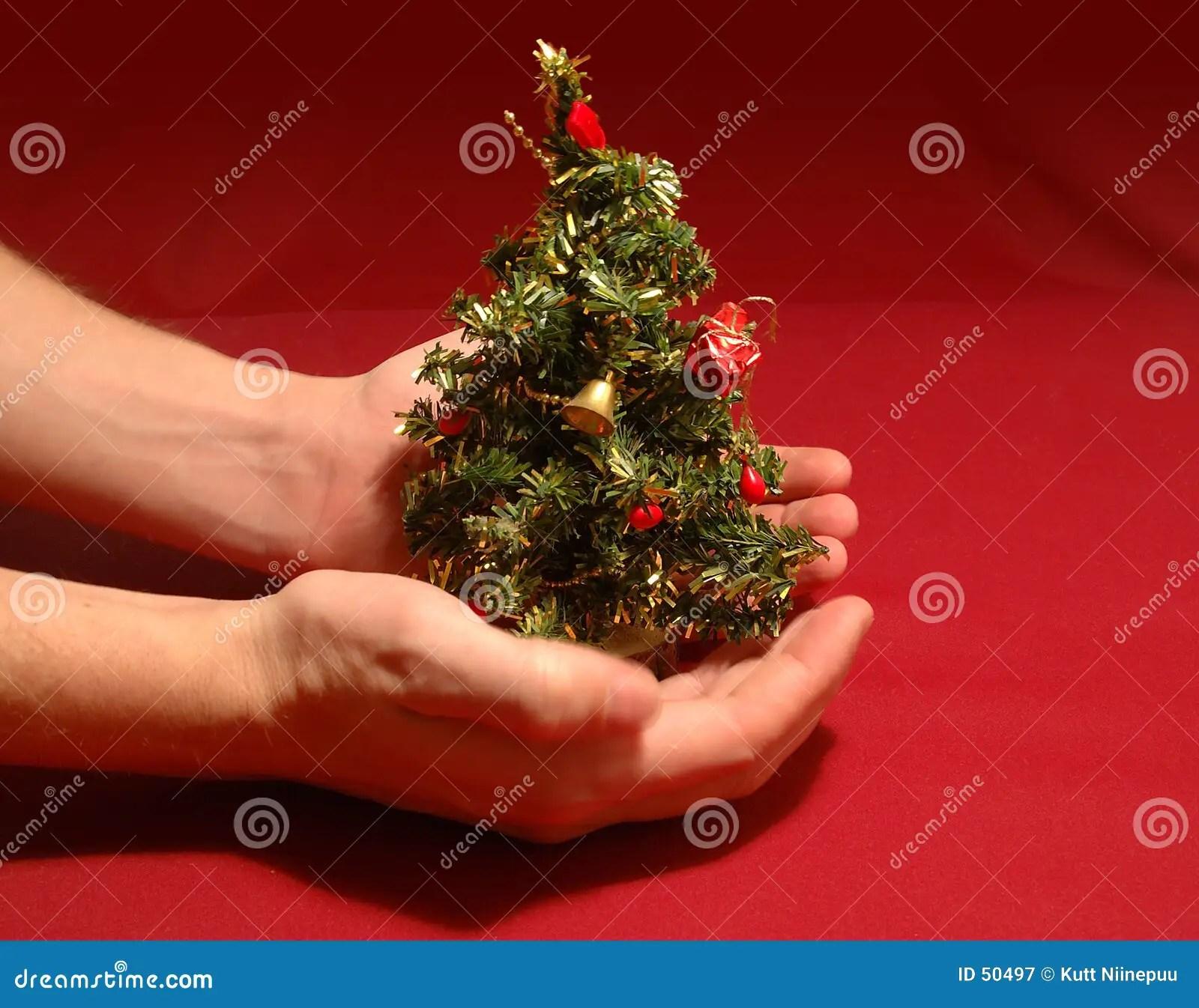 3d Wallpaper Gift Tiny Christmas Tree Royalty Free Stock Photography Image