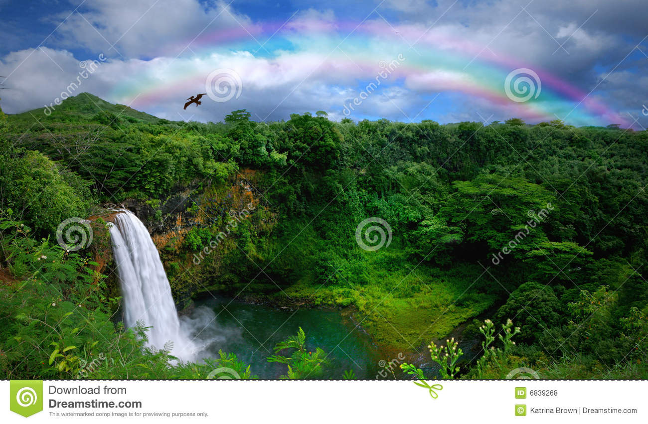 Fall Vector Wallpaper Top View Of A Beautiful Waterfall In Hawaii Royalty Free