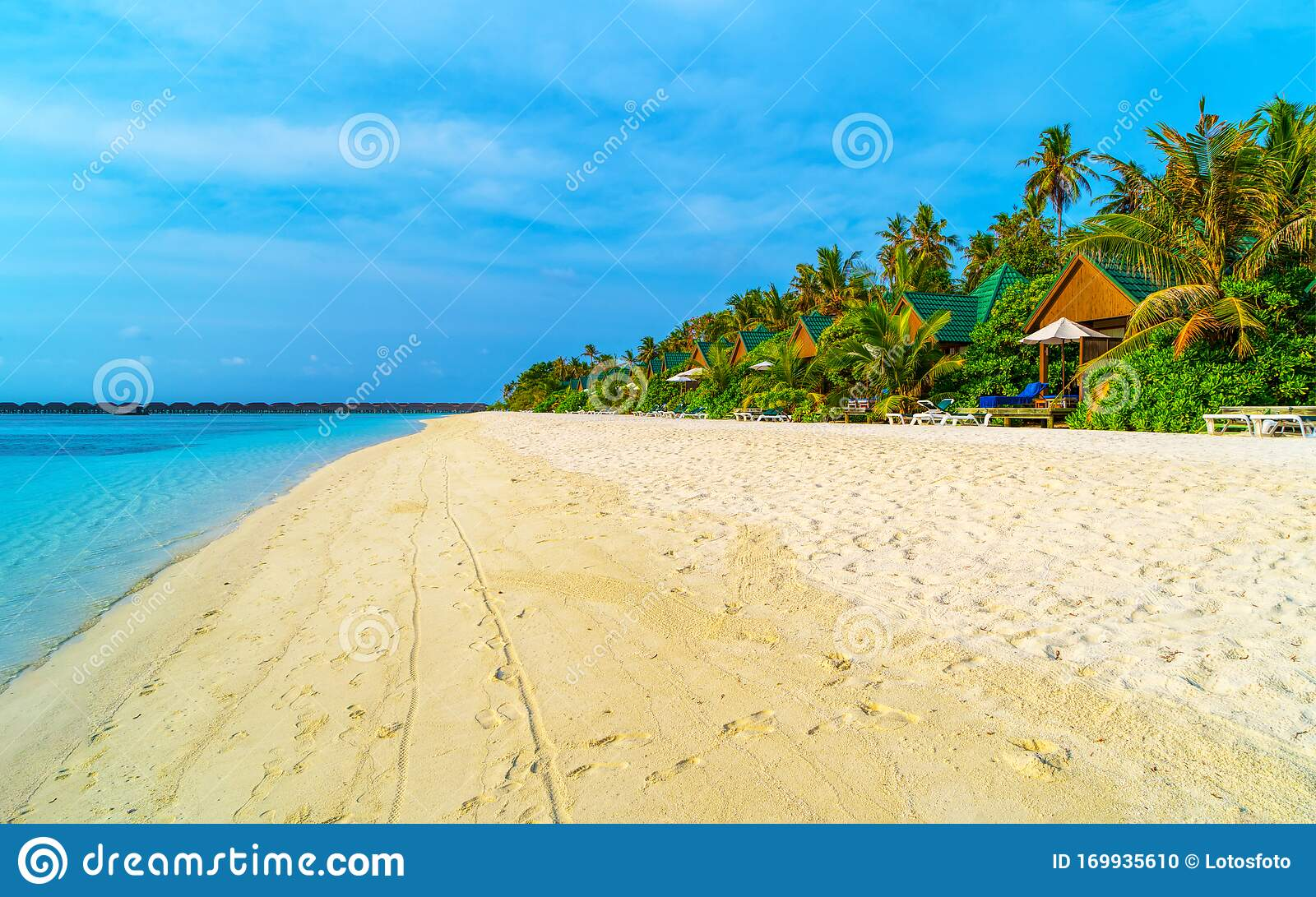 Tropical Bungalow On The Amazing Beach With A Palm Tree Stock Photo Image Of Hotel Polynesia 169935610
