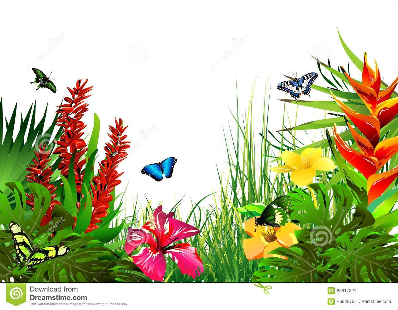 Tropical Artwork Tropical Flowers And Butterflies Stock Illustration