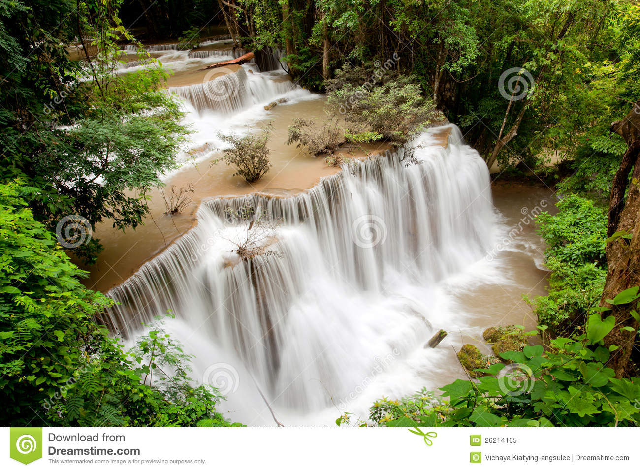 Fall Vector Wallpaper Tropical Rain Forest Waterfall Stock Image Image 26214165