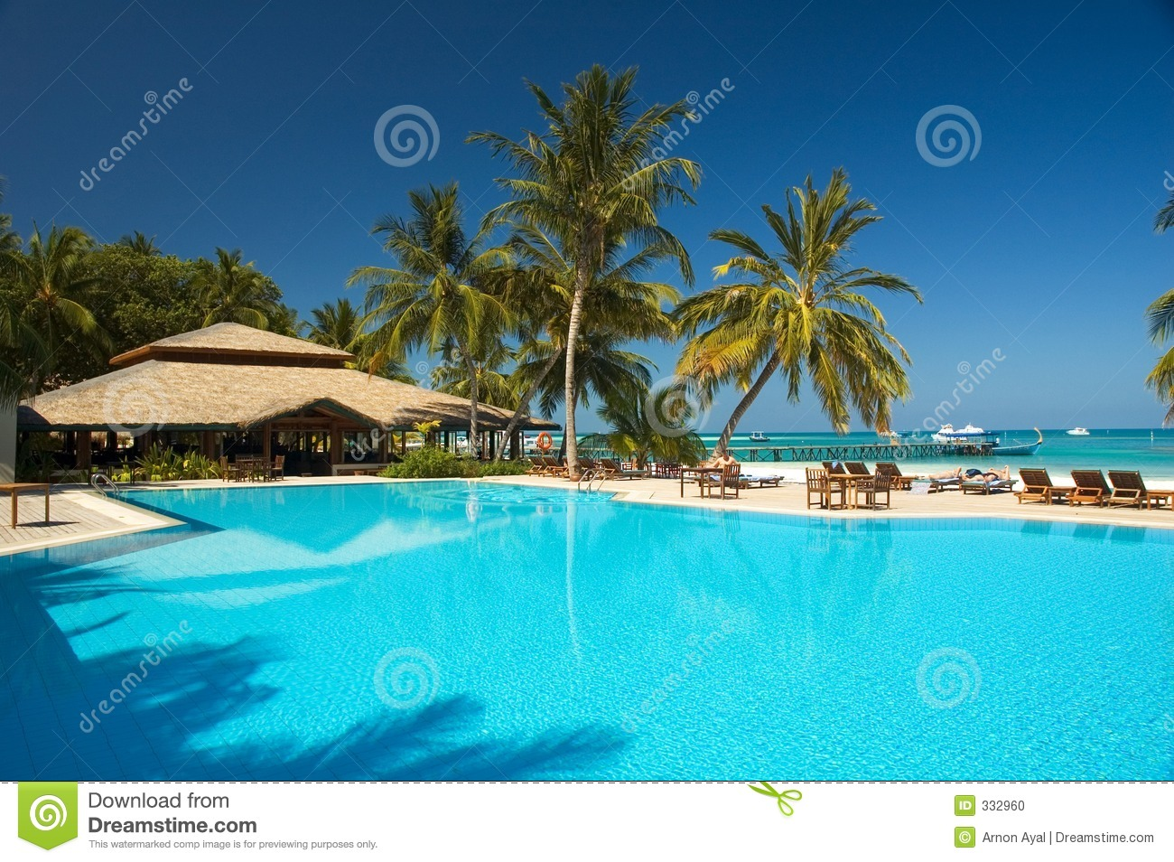 Tropic Zwembad Tropical Swimming Pool Stock Photo - Image: 332960