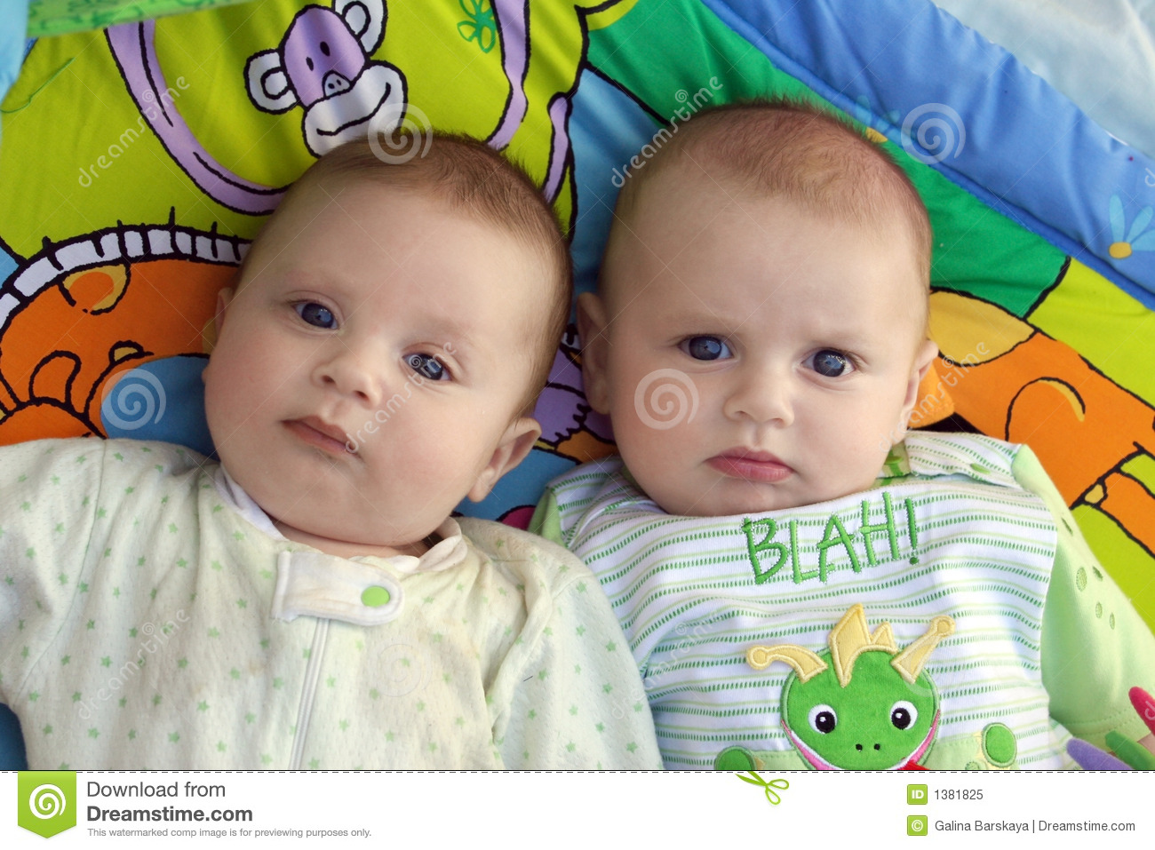 Twin Baby Boys Stock Image Image Of Twin Daycare Babies