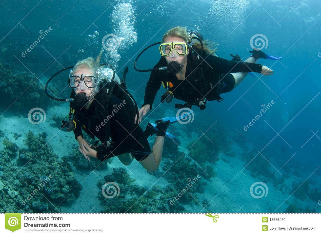 Doctor Who 3d Wallpaper Two Female Scuba Divers Dive Together Stock Photo Image