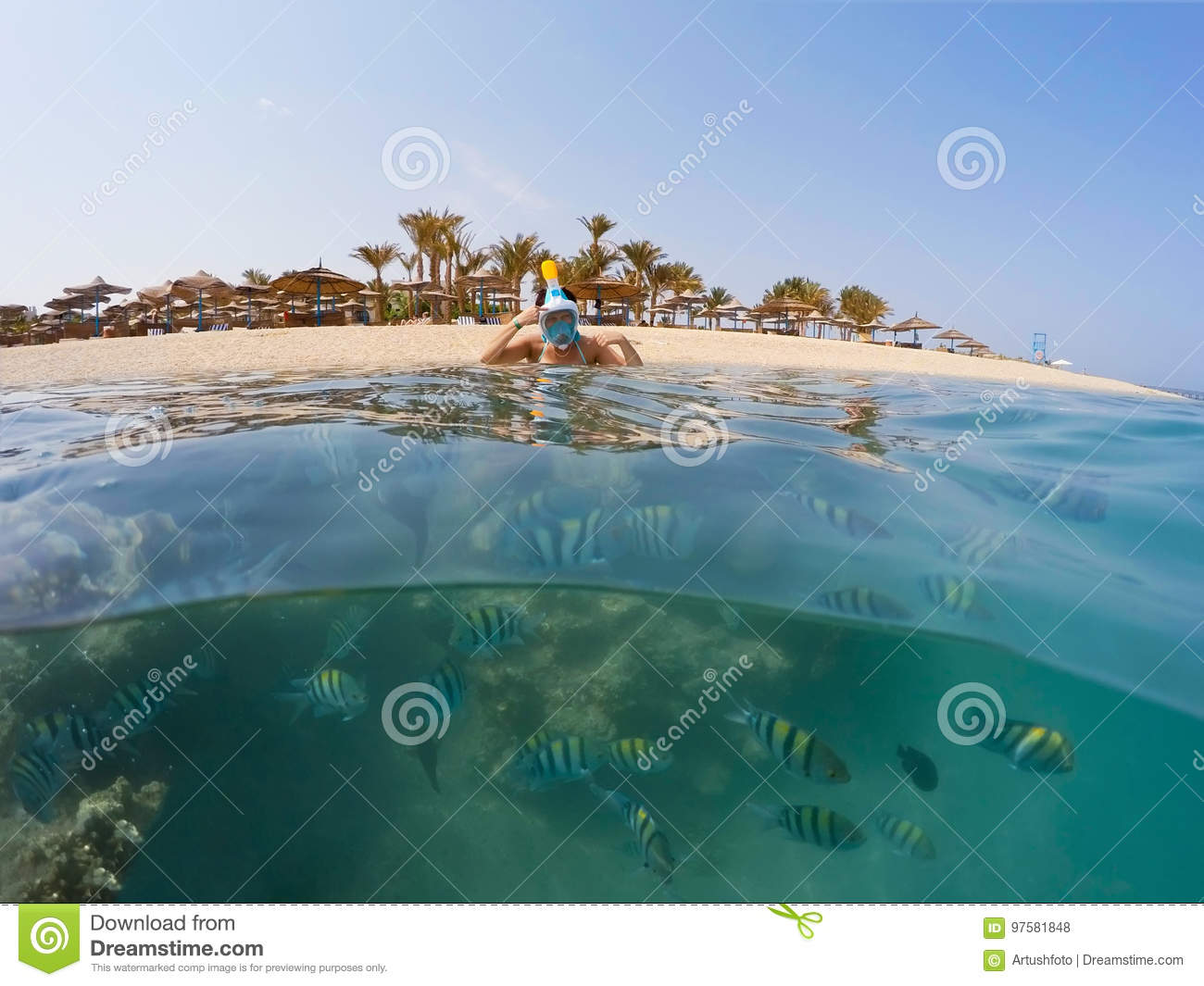 Split Wit Underwater Surface Split View Of Coral Fish And Resort Beach Wit