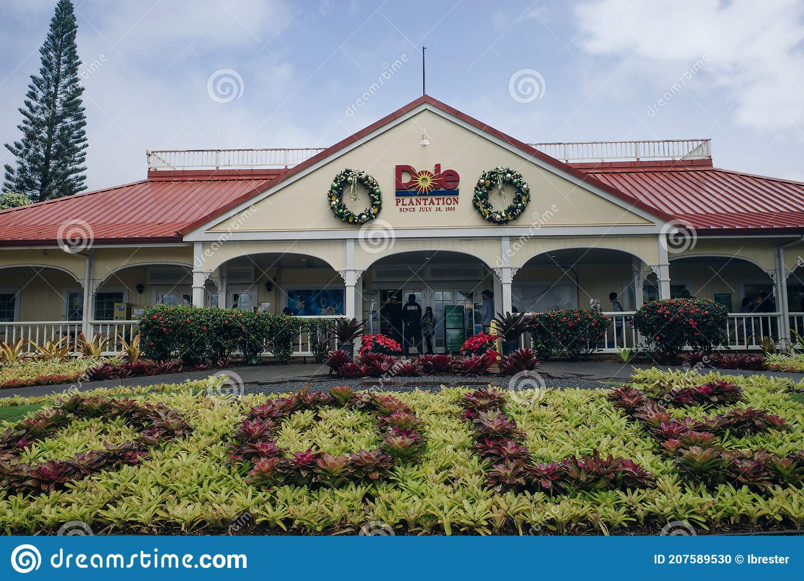 Dole Plantation Garden Photos Free Royalty Free Stock Photos From Dreamstime