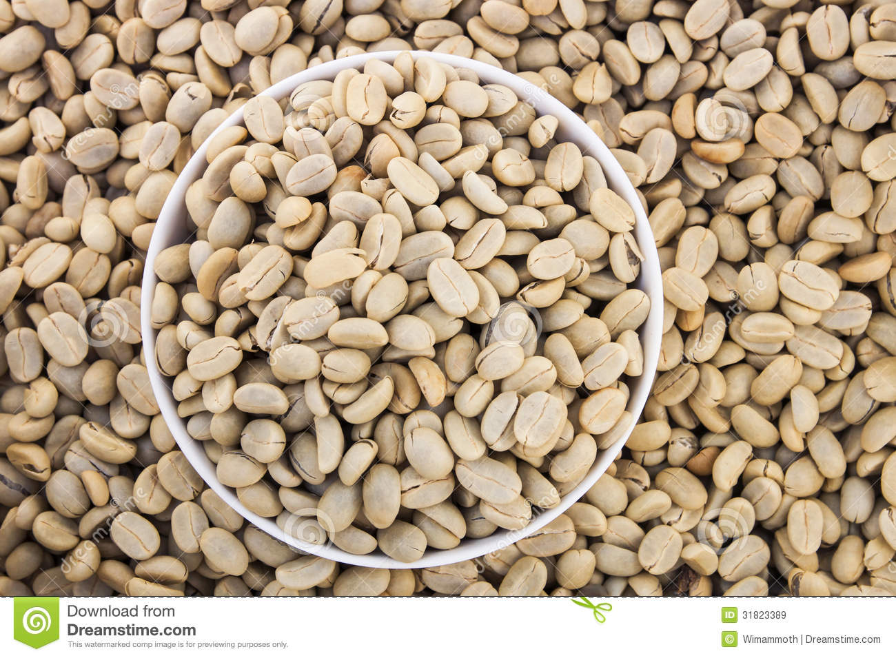 Unroasted Organic Arabica Coffee Beans Unroasted Green Coffee Beans Royalty Free Stock Images