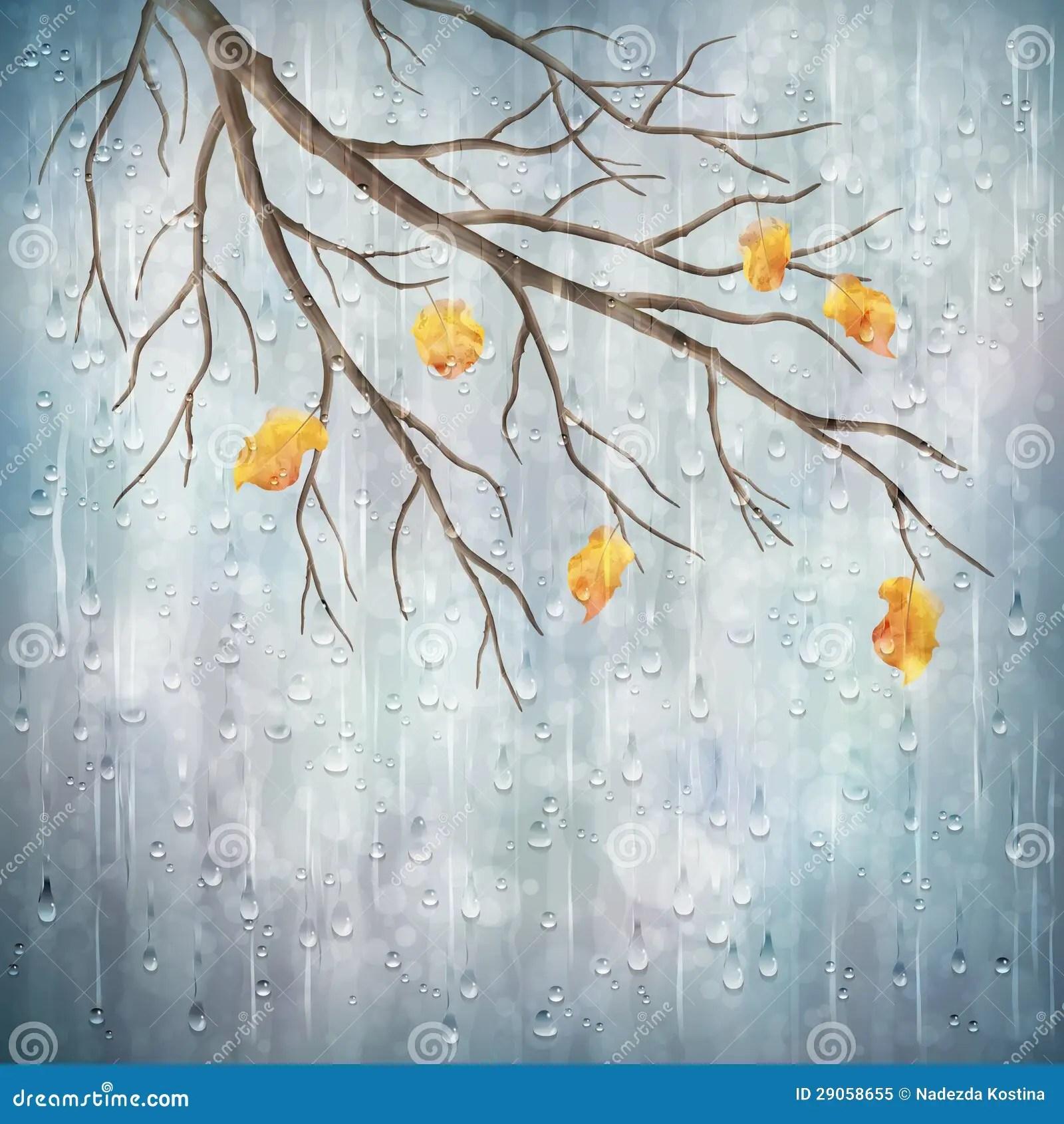 Free Wallpaper Fall Flowers Vector Autumn Rain Weather Artistic Natural Design Royalty
